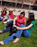 Teenager, der draußen studiert Lizenzfreie Stockfotografie