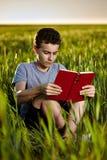 Teenager, der ein Buch bei Sonnenuntergang liest Stockbild