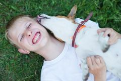 Teenager with a dog in the nature, stock photo