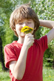 Teenager enjoys odors from dandelions Royalty Free Stock Photography