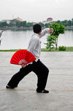 A teenager exercise by Chinese martial art Stock Image