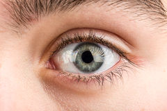 Teenager eye macro. Beautiful young teenager health brown eye macro royalty free stock photography