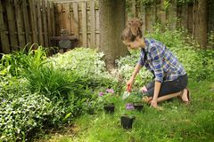 Teenager gardening. During a nice summer day Royalty Free Stock Photography