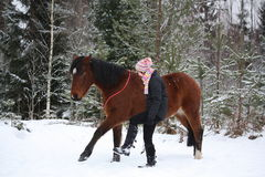 Teenager girl and brown horse walking through the forest togethe Royalty Free Stock Images