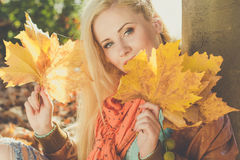 Teenager girl is holding yellow maple leaves Stock Photos