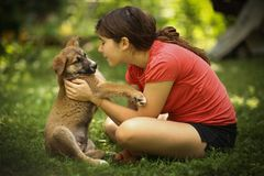 Teenager girl hug puppy shepherd dog close up photo. On green garden background Stock Image