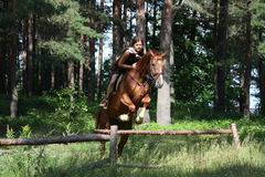 Teenager girl jumping over the fence with horse Stock Image