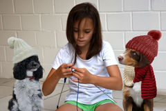 Teenager girl knits for her dogs Royalty Free Stock Photo