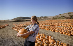 Teenager girl in plaid shirt choosing pumpkins Stock Image