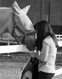 Teenager Girl Playfully Kissing Here Horse. Royalty Free Stock Photo