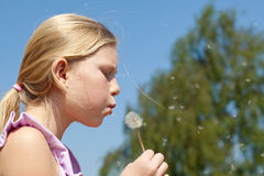 Teenager girl puffing to dandelion Stock Photography