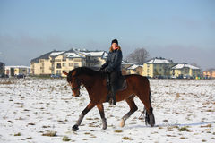 Teenager girl riding bay horse in winter Stock Image