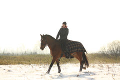 Teenager girl riding bay horse in winter Royalty Free Stock Image