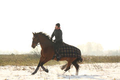Teenager girl riding bay horse in winter Stock Photography