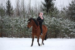Teenager girl riding horse without saddle and bridle Stock Photography