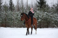 Teenager girl riding horse without saddle and bridle Royalty Free Stock Photos