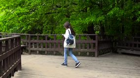 Teenager girl using mobile phone on the wooden bridge. Young teen texting message on smartphone walking. Motion camera. Teenager girl using mobile phone on the stock footage