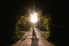 Teenager girl in wedding dress. In nature green park with and sunset light Royalty Free Stock Image