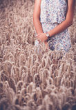 Teenager girl at wheat field Stock Images
