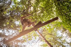 Teenager having fun on high ropes course, adventure, park, climbing trees in a forest in summer. Teenager having fun on high ropes course, adventure, park Stock Photos