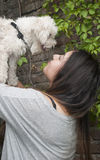 Teenager with her dog Stock Photography