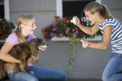 Teenager and her dog posing for picture. Teen girl poses with her dog while best friend takes photo with digital camera Stock Photos
