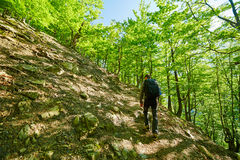 Teenager hiker walking on a mountain trail Royalty Free Stock Images