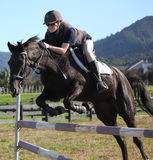 Teenager jumping black horse Royalty Free Stock Photography