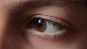 Teenager kid eyes. Macro shot