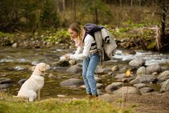 Young girl trains and plays with puppy golden retriever in the wild, next to a river. royalty free stock photography