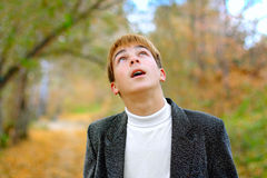 Teenager look upwards Stock Image