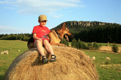 Teenager mit Hund auf der Wiese stockfoto