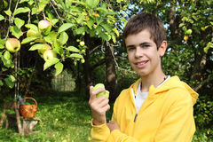 Teenager near apple tree Stock Images