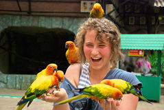 Teenager with parrots Royalty Free Stock Image