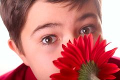 Teenager and red flower Stock Photo