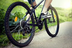 Teenager riding a bicycle on the road summer sunlit royalty free stock photo