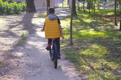 Teenager riding a bicycle in the sun.  royalty free stock images