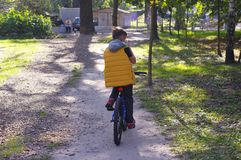 Teenager riding a bicycle in the sun.  royalty free stock image