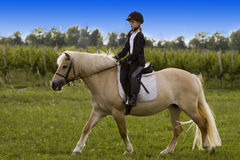 Teenager riding Horse Stock Images