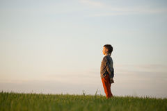The teenager is standing in the tall grass at sunset Royalty Free Stock Photo