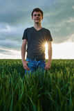 Teenager standing in a wheat field at sunset Stock Images