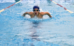 Teenager swimmer Royalty Free Stock Images