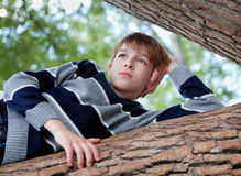 Teenager is in a tree and dreams, summer Stock Photo