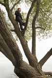 Teenager up in tree thinking Stock Photos