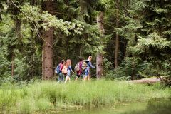 Teenagers with backpacks hiking in forest. Summer vacation. Teenagers with backpacks hiking in forest. Summer vacation adventure Royalty Free Stock Photos