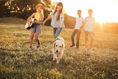 Teenagers with dog walking in park Royalty Free Stock Photo