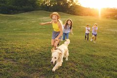 Teenagers with dog walking in park. Happy multiethnic teens walking with golden retriever dog in park Stock Photography