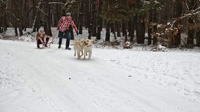 Teenagers enjoying sleigh ride. Fun with the family dogs - slow motion. Teenager girl and boy enjoying sleigh ride. Young people sled in snowy forest in winter stock video footage