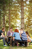 Teenagers on holiday in nature play chess Stock Image