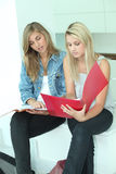Teenagers revising Stock Images